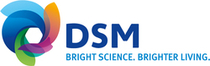 DSM Logo IDM Feb