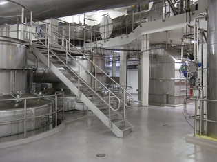 Dairygold_plant_Mallow