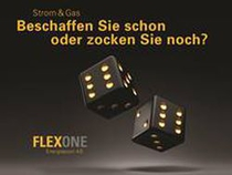 FlexOne_Visual